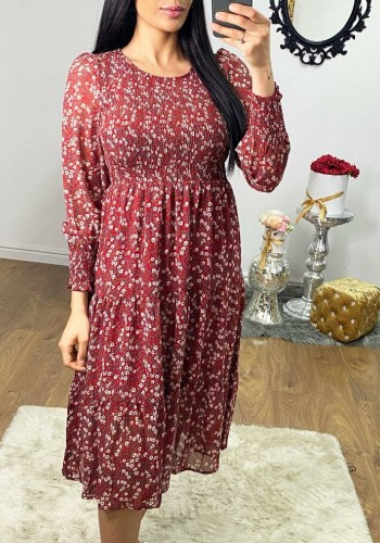 Brunella Burgundy Rouched Elasticated Detailed Paisley Dress